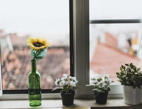 5 propiedades de una vivienda sostenible
