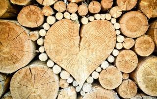 Materiales de construcción sostenibles - madera