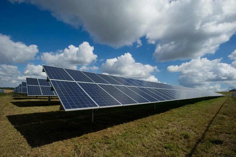 placas fotovoltaicas - foto campo